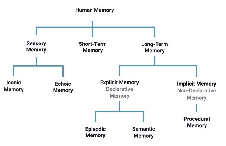 Types of Memory Diagram